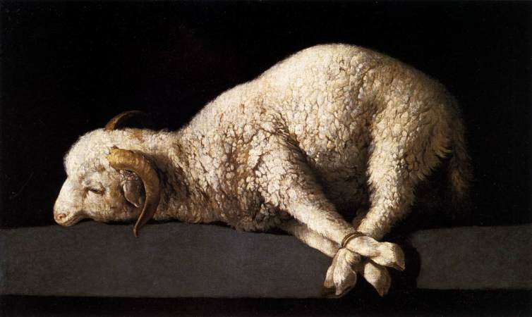 sacrificial lamb propitiation